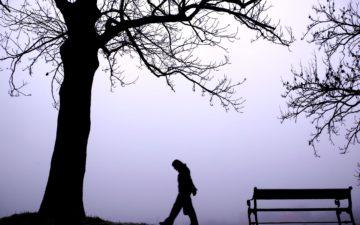I camini inquinano di più con la nebbia