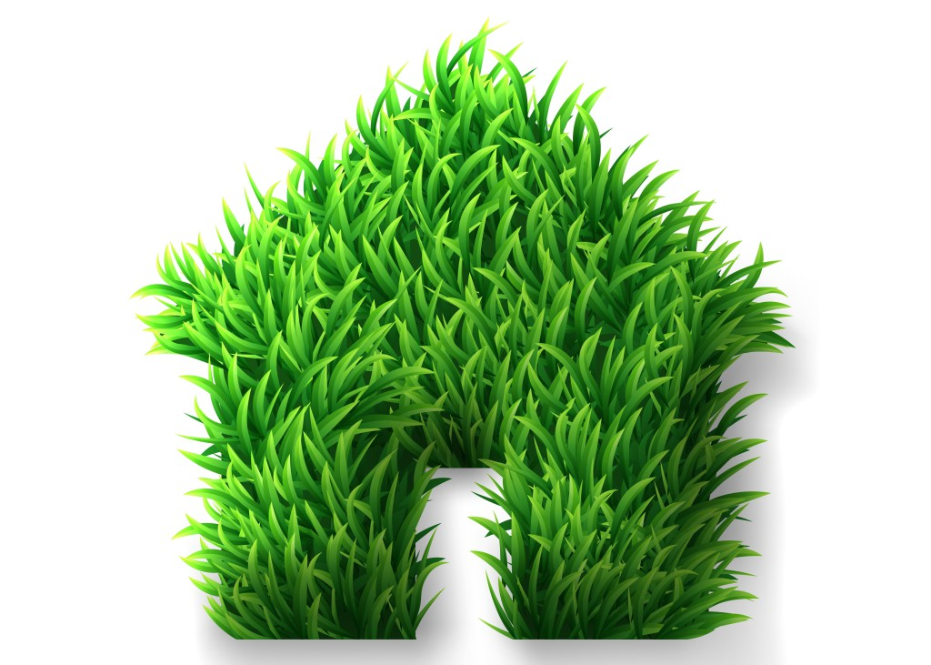 Green grass house icon
